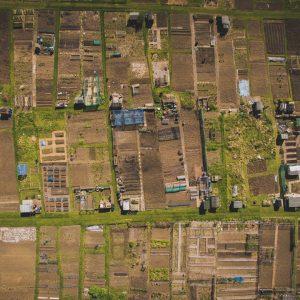 TP. HCM sẽ thí điểm cho phép người dân xây dựng nhà ở trên đất nông nghiệp