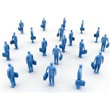 Mô hình, tổ chức & điều lệ công ty TNHH hai thành viên trở lên